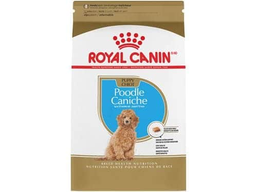 hinh anh thuc an royal canin poodle puppy cho poodle con 1 4