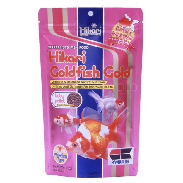 hinh san pham hikari goldfish gold baby
