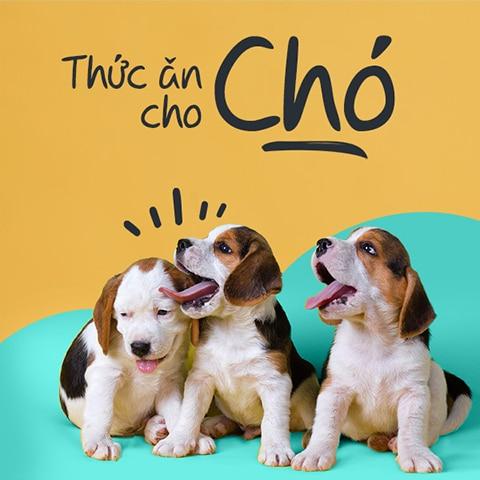 mua thuc an cho cho tai yolo pet shop