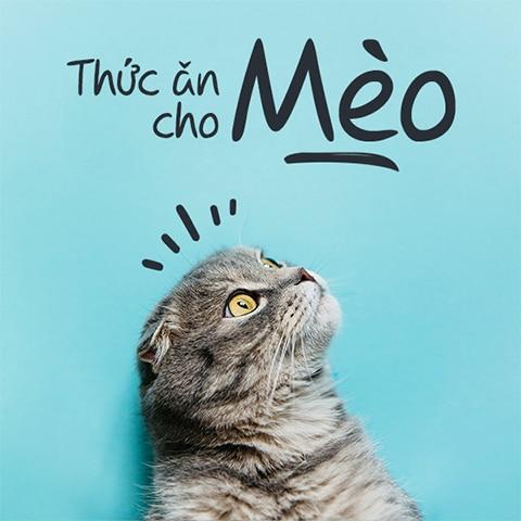 mua thuc an cho meo tai yolo pet shop