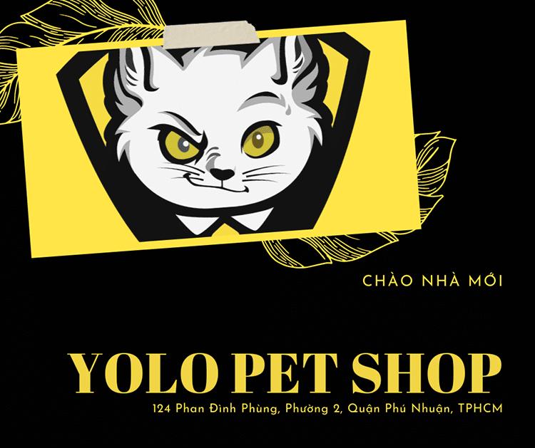 yolo pet shop huynh van banh chuyen ve nha moi