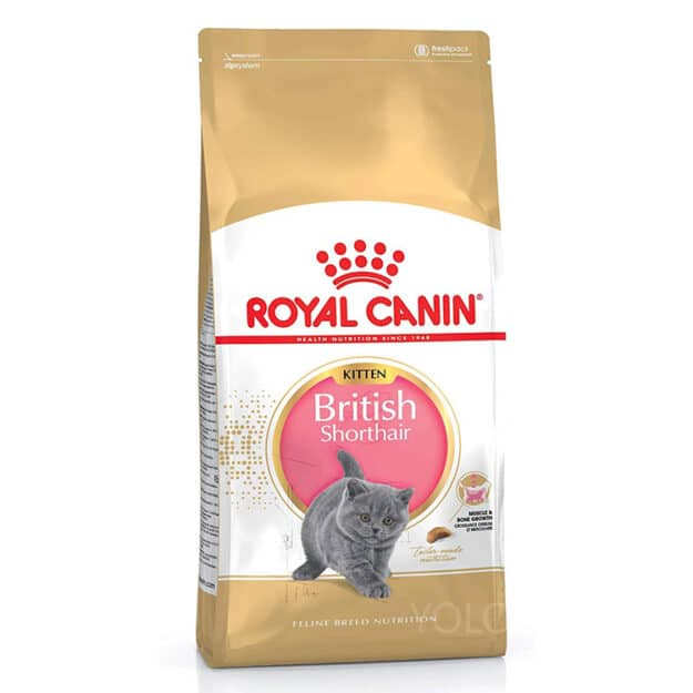 hinh san pham royal canin british shorthair kitten