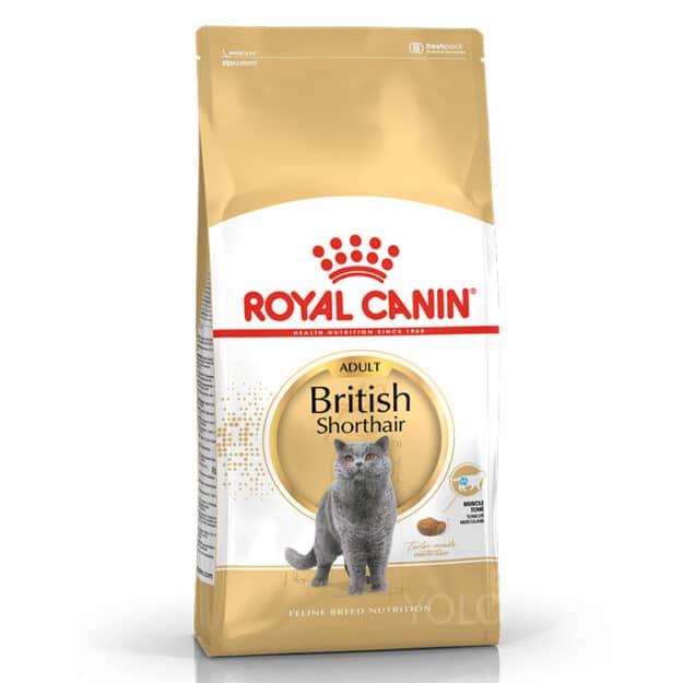 hinh san pham royal canin british shorthaird adult