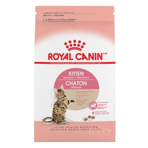 hinh san pham royal canin kitten spayed neutered dry cat food
