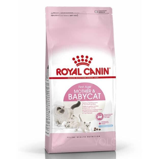 hinh san pham royal canin mother babycat