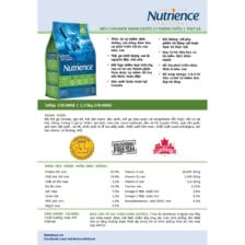 chi tiet ve thanh phan dinh duong hat nutrience cho meo con