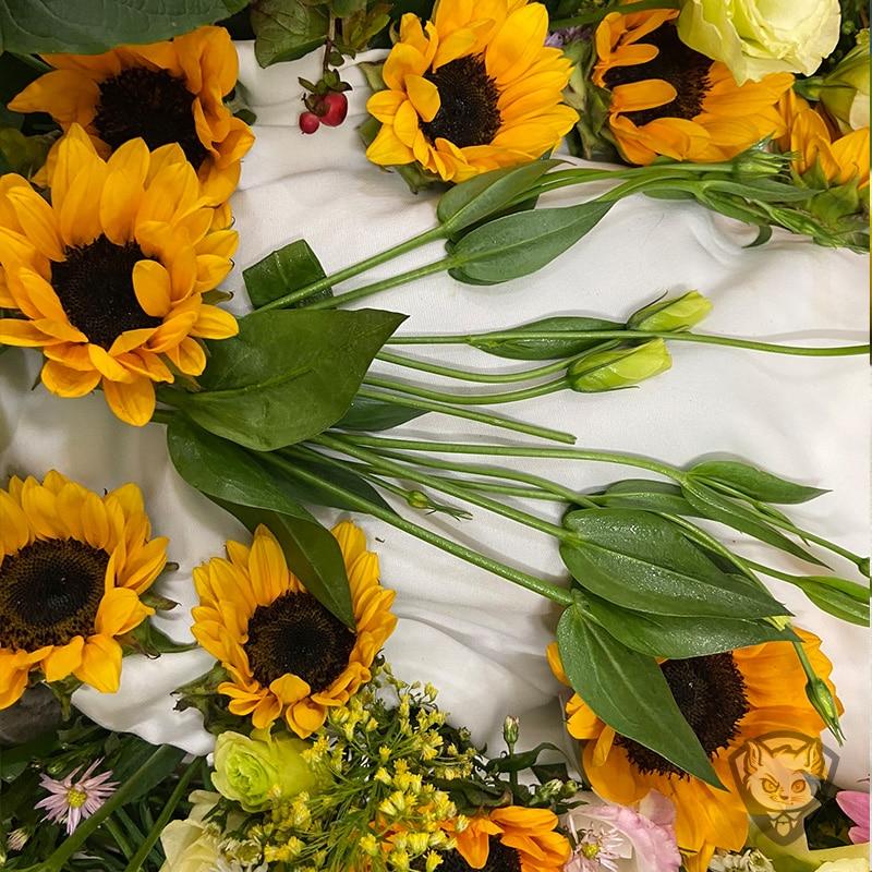 thu cung cho meo duoc lam hoa truoc khi hoa tang