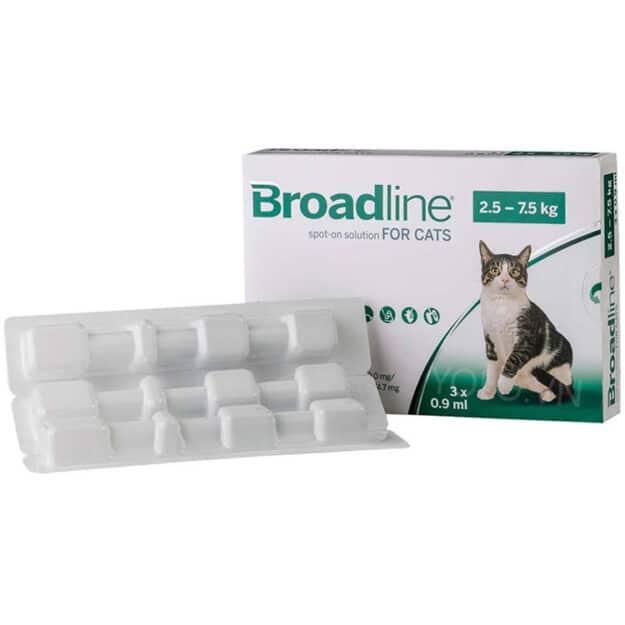 hop 3 ong broadline cho meo lon