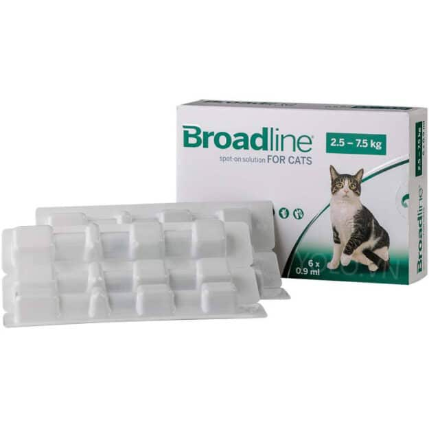 hop 6 ong broadline for cat 25kg to 75kg